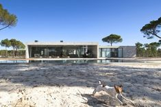 Built on a site of 4200 square feet in Comporta, Portugal, this exceptional house was designed by a company called RRJ Arquitectos. The residence impresses Beautiful Interior Design, Dream Home Design, Beautiful Architecture, Modern Architecture, Villa, Dog Trot House, House Of The Rising Sun, Concrete Houses, Concrete Walls