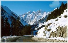 road to Shames Mountain,