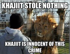 """Khajiit stole nothing. Khajiit is innocent of this crime."" Elder Scrolls Online"