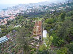 Jardim Botânico - Ilha da Madeira