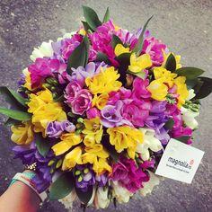 Buchet cu frezii colorate. colorful freesia bouquet