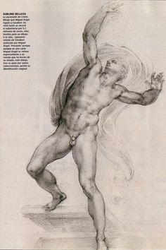 Michelangelo's Cavalieri la voz de galicia el semanal Tommaso Cavalieri