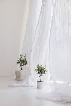 White sheer linen curtains, White canopy made of linen muslin, Perfect white linen drapes Bed Drapes, White Linen Curtains, Sheer Linen Curtains, White Canopy, Panel Curtains, Bed Linen, Linen Fabric, White Linens, Sheer Curtain Panels