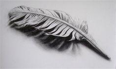 Feather by Melinda Alice Kierre, graphite pencil, 2008