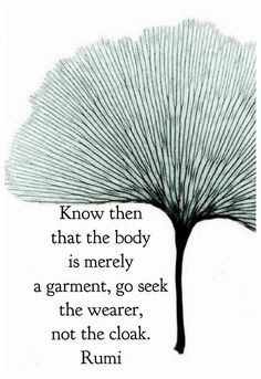 Know then that the body is merely a garment, go seek the wearer, not the cloak.  Rumi