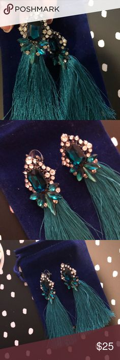 Aqua Tassle Earrings Pom Pom fashion Aqua tassel and jewel earrings new with tags  These go well with just about anything easy to dress up or down and sure to garner compliments.  Free gift with every purchase  Bundle for A private offer Gracie Stone Jewelry Earrings