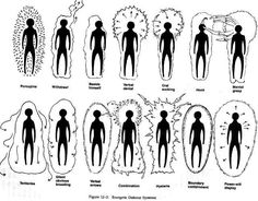 Some Variations of the Human Energy Field. Demonstrates the need for strengthening and protecting your own❤