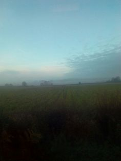 Misty morning today. Blurry photo on a steamed up bus!
