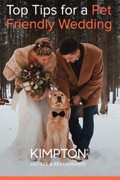 Include the whole family in your wedding! Top tips for dog in wedding ceremony, pet favors, and dog wedding outfits. Second Weddings, Real Weddings, Pet Friendly Weddings, Dog Wedding Outfits, Wedding Ceremony, Our Wedding, Kimpton Hotels, Dog Friends, Wedding Planner