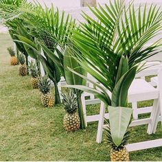 Summer wedding inspiration. LOVE this idea of pineapples!!
