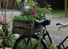 Gemma Floral Design Piante Fiori Milano