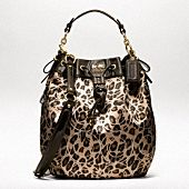 Another Cute winter Coach purse.