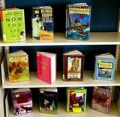 New book display in the young adults section of the Lester Public Library.