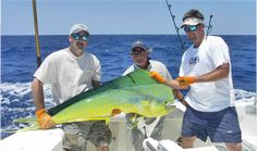 1000 images about st augustine vacation rentals on for Deep sea fishing st augustine