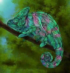 Although the basic structure of each of these animal drawings is true-to-life, Ben Geiger, the artist, has used his creativity to build complex textures with swirls of lines and colour. In some of the drawings it seems to me that I am looking inside the animals to see its muscle contours.