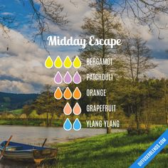 Midday Escape - Essential Oil Diffuser Blend