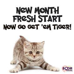 via @kimgarst  It's a brand new month! >>>>Whatcha got planned so far?  http://ift.tt/1H6hyQe  Facebook/smpsocialmediamarketing  Twitter @smpsocialmedia