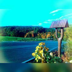 Podzim doma