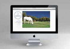 Adema — Web Design  http://studioahha.com/ADEMA