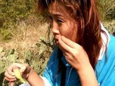Кактус это вкусно и полезно!, Хайнань, Китай - Cactus it tasty and is us...