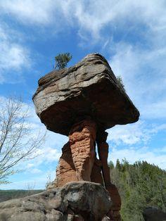 Der Teufelstisch in Rheinland-Pfalz. Er befindet sich im Hinterweidenthal und ist beeindruckende 14 Meter hoch. Rundherum liegt der schöne Pfälzerwald. Mehr Informationen zum Pfälzerwald und zum Nationalpark Pfalz finden sie auf unserem Blog: http://www.jewels24-news.de/schmuck-news/allgemeine-news/ein-nationalpark-in-rheinland-pfalz-und-saarland/ . #teufelstisch #rheinland #nationalpark