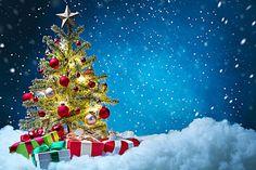 Caixa de presente de Natal, a árvore de natal pano de Fundo