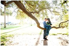 sweet moment captured in a tree, sunset engagement photos, Charleston engagement session, natural light photography
