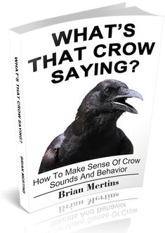 http://www.nature-mentor.com/wp-content/uploads/2017/12/whats_that_crow_saying_.pdf