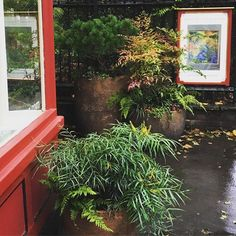Image result for rupert muldoon pots Chateau Marmont, Stock Pictures, Terrace, Pots, Cottage, Key, Water, Interior, Image
