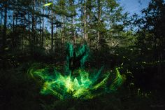 https://flic.kr/p/vXmQgT | Fireflies - Laserbug Shaman Calling | Fireflies! Light painting with fireflies! I stood in the swamp for almost an hour taking 95 long exposures of the fireflies in this scene followed by a self portrait in electroluminescent wire and stacked all those photos together in post processing to make this image. Other than stacking the exposures no digital manipulation was used. Follow me on Facebook www.facebook.com/WrootDown