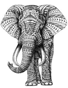 This picture shows the pattern principles. Different shapes and patterns make up the inside of the elephant. There is a regular repetition of shapes in the ears.  The pattern moves your eyes outward.