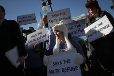 Republicans Want to Pay for Tax Cuts by Drilling in the Arctic National Wildlife Refuge