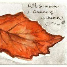 autumn-dreaming: maulicatart: All summer I dream of autumn. Day Illustration a Day Love this(: ☁♥It's autumn year-round♥☁ Autumn Rain, Autumn Leaves, Hate Summer, Spring Summer, October Country, Seasons Of The Year, Hello Autumn, Happy Fall, Fall Season