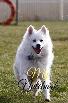 Amazon.com : awesome dog International Symbols, Best Dogs, Husky, Animals, Animales, Animaux, Animal Memes, Husky Dog, Animal