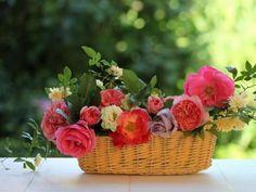 quenalbertini: Flowers in a basket Fresco, Hello July, Shabby Chic Garden, Good Morning Flowers, Flower Basket, Potpourri, Table Centerpieces, Floral Arrangements, Beautiful Flowers