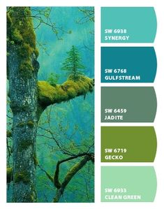 Paint colors from Chip It! by Sherwin-Williams - living room and kitchen tie in peachy color