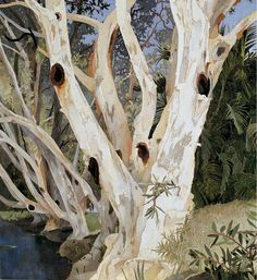 Paperbarks1993, Cressida Campbell #tree #art