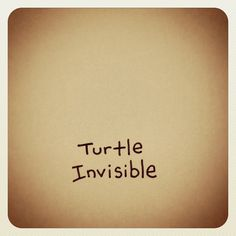 Turtle Invisible by Cute Turtle Drawings, Cute Drawings, Animal Drawings, Tiny Turtle, Turtle Love, Pet Turtle, Cute Turtles, Baby Turtles, Kawaii Turtle