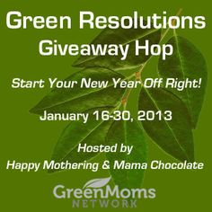 Green Resolutions Giveaway – Water Filtration Pitcher and Reusable Water Bottle Set