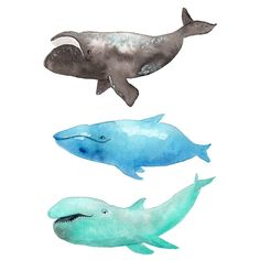 They're a little weird 😀  .  Day 2 of #the100dayproject #100daysofwhales .  Prints are available at: society6.com/tinavandijkart