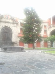 Museo Nacional de las Culturas en Cuauhtémoc, Federal District