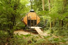 Ecological Hotel: Bird Nest Cabin Perched in French Forest