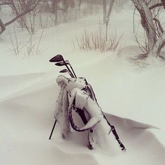 #golf on Instagram