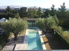 #Paisajismo #Contemporaneo #Piscina #Plantas #Arboles