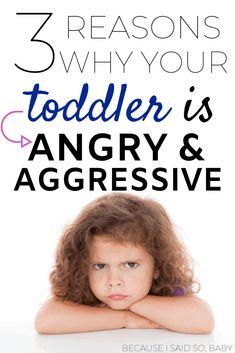 Parenting Memes, Parenting Toddlers, Parenting Books, Gentle Parenting, Bad Parenting, Parenting Advice, Peaceful Parenting, Toddler Anger, Toddler Behavior