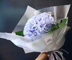 Liziday Flower design / Flowers _hydrangea wrapping / Floral design / Flower arrangement _ lizi@liziday.com www.liziday.com