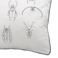 Insect Pillows