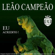 Leão campeão