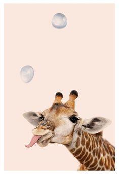 * in 2019 - giraffe art, iphone wallpaper en cute an Animal Wallpaper, Cool Wallpaper, Wallpaper Backgrounds, Iphone Wallpaper, Trendy Wallpaper, Giraffe Art, Cute Giraffe, Baby Giraffes, Funny Giraffe