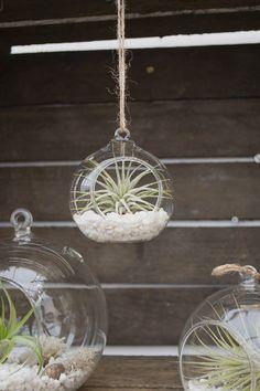 Gardening Trends From GROWLondon